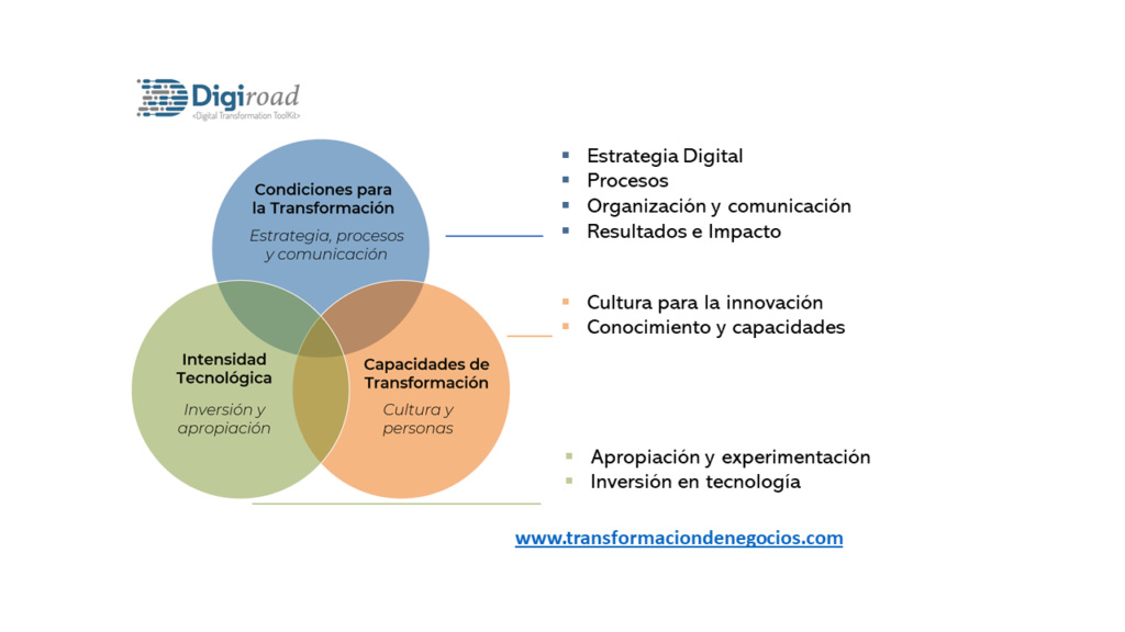 Dimensiones y componentes de la medición de madurez -  Transformación de Negocios